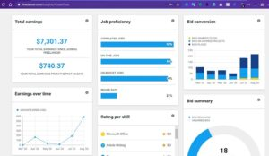 How much freelancers earn in India freelancer website dashboard